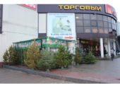 IMG_1058-500x500
